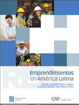 CAF 2013 Report: Entrepreneurship and Development Cover