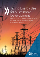 taxing energy use for sustainable development