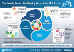 Private Sector - Missing Piece of the SDG's
