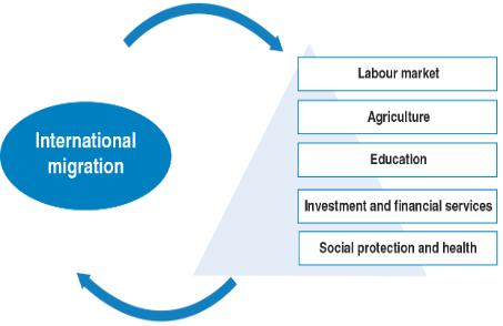 IPPMD_Migration and sectoral development policies_visual