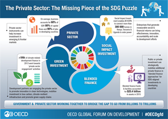 Infographic - The Private Sector - The Missing Piece of the SDG puzzle