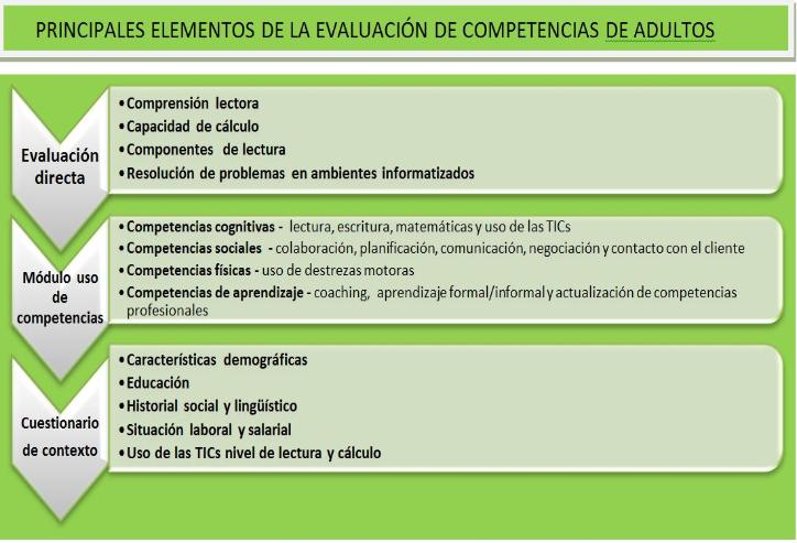 This chart shows the main elements of the Survey of Adult Skills (in Spanish)