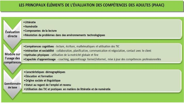 PIAAC - Main elements chart - Green (FR)