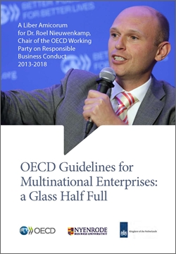 OECD Guidelines for Multinational Enterprises: A glass half full 250x360