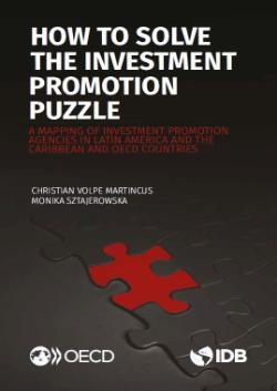 How to solve the investment promotion puzzle 250x353