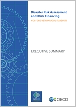 G20/OECD methodological framework on disaster risk assessment and risk financing - executive summary cover - 150 pixels
