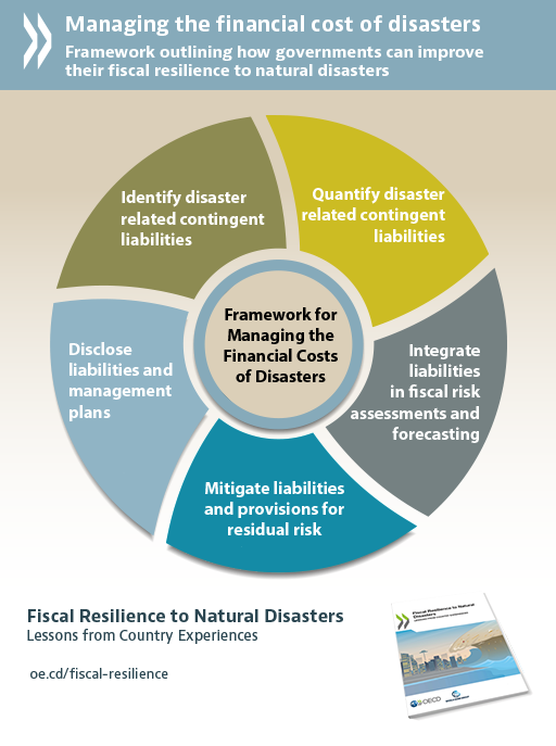 Fiscal Resilience to Natural Disasters - Lessons from