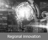 More information on regional innovation