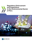 Enforcement and Inspections Peru 2020