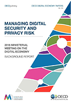 Managing Digital Security and Privacy Risk