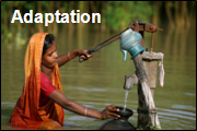 Adaptation image no 3