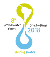 Official 8th World Water Forum Logo