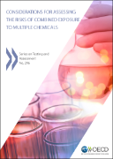 Considerations for Assessing the Risks of Combined Exposure to Multiple Chemicals
