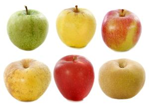Apple composition