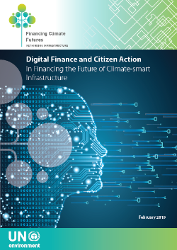 Cover_ Case Study Digital Finance and Citizen Action