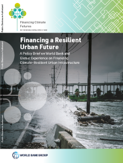Cover_Financing a Resilient Urban Future_Case Study