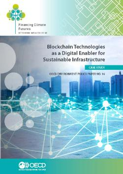 Case study Blockchain Technologies as a Digital Enabler for Sustainable Infrastructure