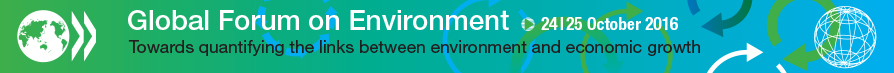 Banner Global Forum Environment and Economic Growth