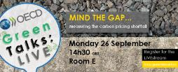 Green talk Mind the gap - carbon pricing