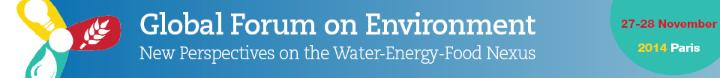 Banner - Global Forum on Environment- New Perspectives on the Water-Energy-Food Nexus-banner