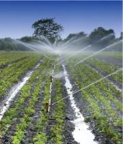 Water use in agriculture - image for main OECD webpage on water