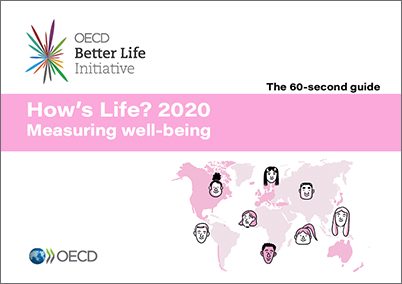 Image result for oecd how's life 2020