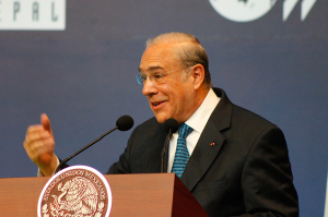 Angel Gurría, OECD Secretary-General in Mexico, 8/01/2013