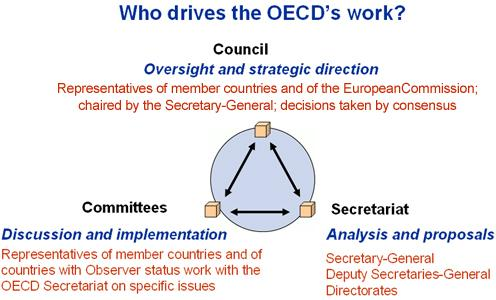 Who does what - OECD International Trade Graph