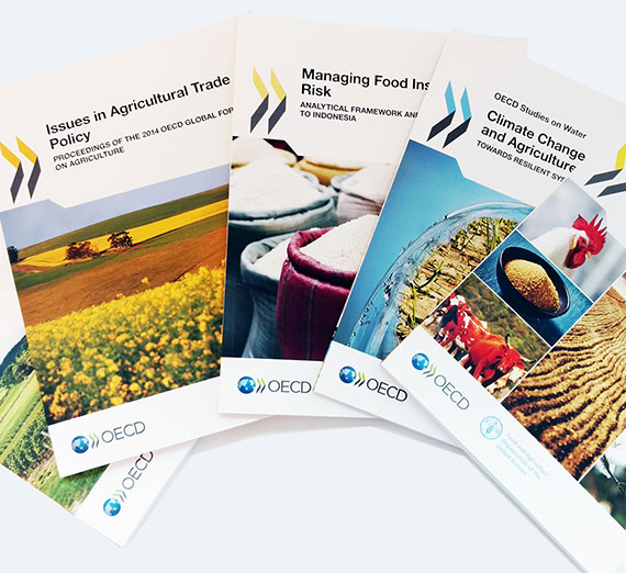 An overview of the common agricultural policy in the 21st century