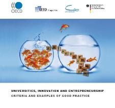 universities innovation and entrepreneurship criteria and examples