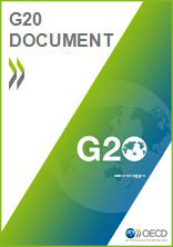 G20 document cover with green border