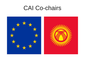 CAI Co-chairs