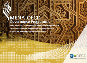 MENA Governance brochure