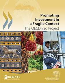 Project Insights: Promoting Investment in a Fragile Context (2016)