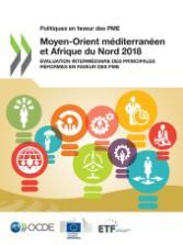 Politiques en faveur des PME : Moyen-Orient méditerranéen et Afrique du Nord 2018 : Évaluation intermédiaire des principales réformes en faveur des PME
