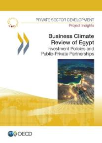 BCR Egypt 2014 Publication Cover page