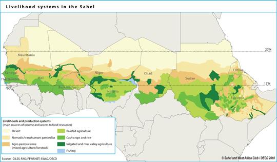 Forest genetic resources ínformation by region