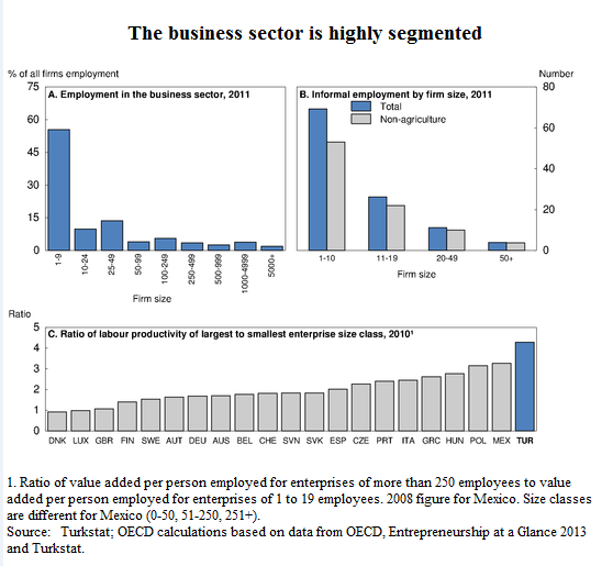 Turkey Business Sector